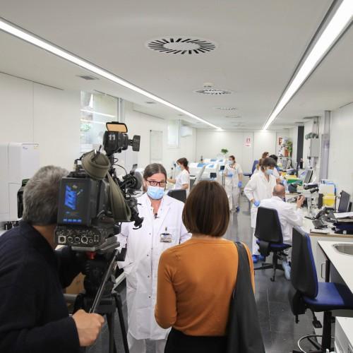 Saps com arribem a conèixer al laboratori una variant de la Covid-19?